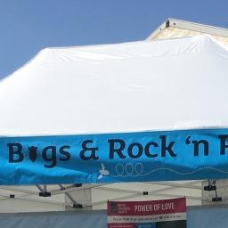 Sex, Bugs & Rock N Roll!